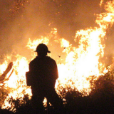 Behind the Lines: Fire Administrators and the Battle Against Wildfires