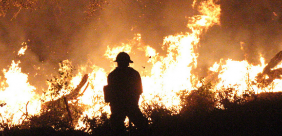 What's It Like to Study Fire Science?